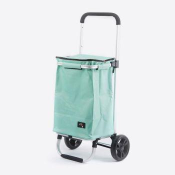 Rixx shopping trolley ijsgroen 30L