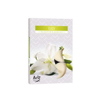 Cosy & Trendy Ct Set 6 Theelichten Lilly 4h