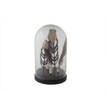 Cosy @ Home Glazen Stolp Pluimen D16xh26cm