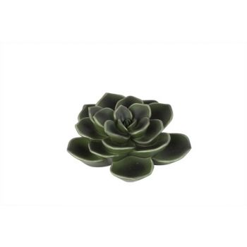 Cosy @ Home Vetplant Hang. Resine Groen 15x6x15cm