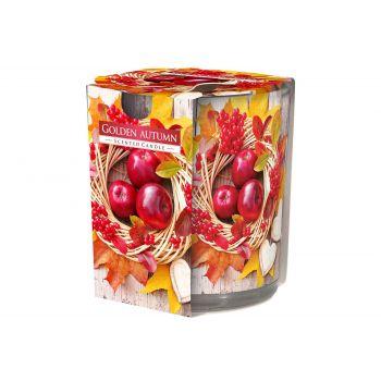 Cosy & Trendy Ct Geurkaars Glas Golden Autumn 22u D7xh