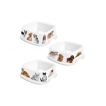 Hega Hogar Pet Mascotas Eetbak Assorti 17,6x17,4x