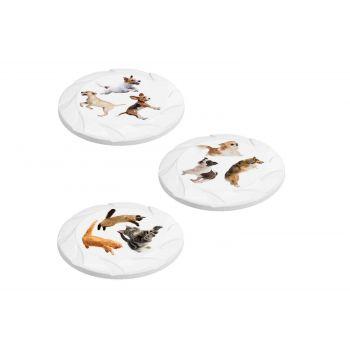 Hega Hogar Pet Mascotas Frisbee Assortie D21.7xh1.9