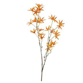 Cosy @ Home Tak Tweedia Oranje 27x12xh79cm Kunststof