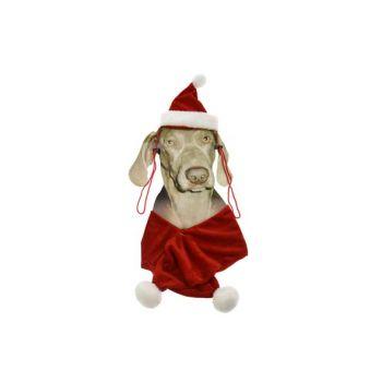 Cosy @ Home Kerstpakje Voor Hond Muts+sjaal